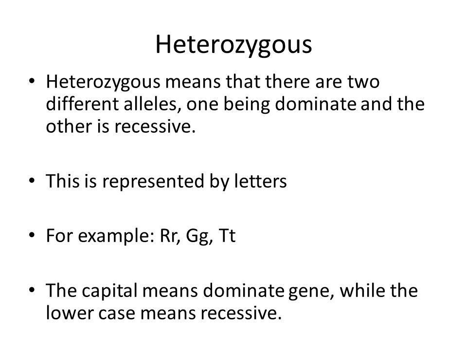 Heterozygous vs Homozygous - ppt video online download