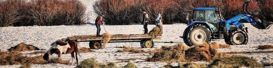 National Farmworker Jobs Program | Montana Rural Employment ...