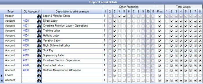 Formatting Financial Statements to Include Payroll Taxes and Insurance