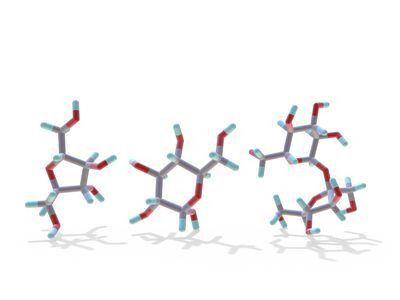 Name 3 Monosaccharides - List of Monosaccharides