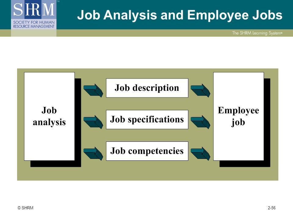 Module 2: Workforce Planning and Employment 26% PHR (59 questions ...