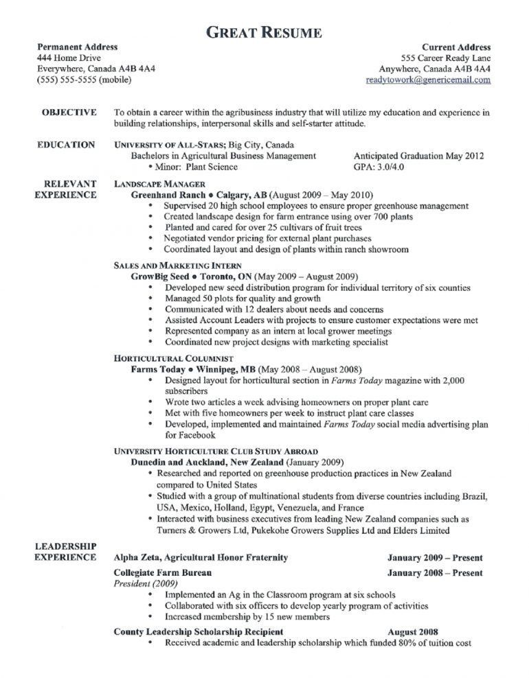 Good Example Of A Resume. Sample Resume Template: Free Resume ...