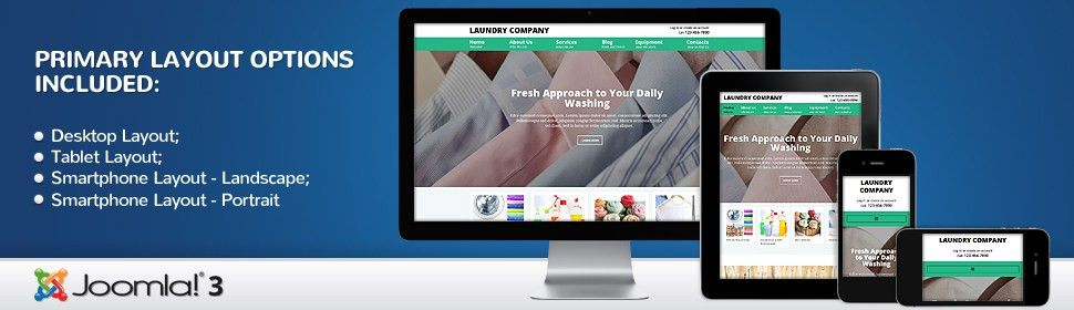 Website Template #52914 Dry Cleaning Company Custom Website ...
