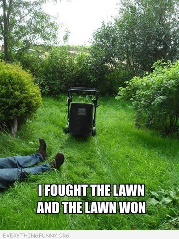 58 best Lawn Humour images on Pinterest | Funny stuff, Funny pics ...
