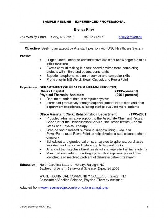 Amazing Resume Samples For Experienced It Professionals | Resume ...