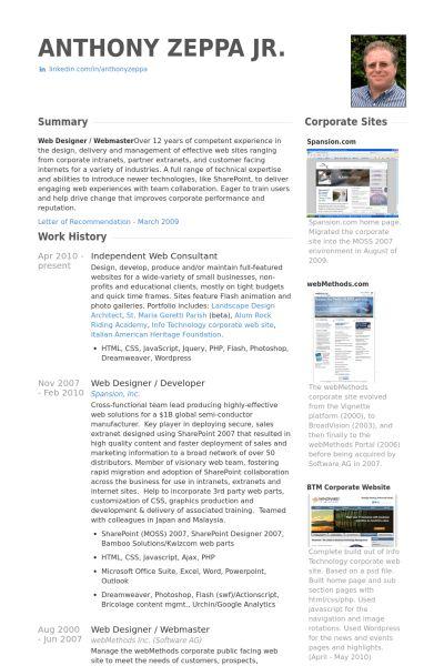Web Consultant Resume samples - VisualCV resume samples database