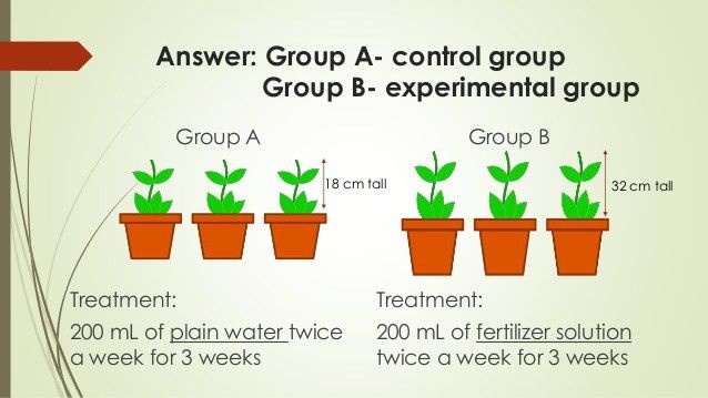 Buzztopics| Keywords || Suggestions for Experiment Control Group ...