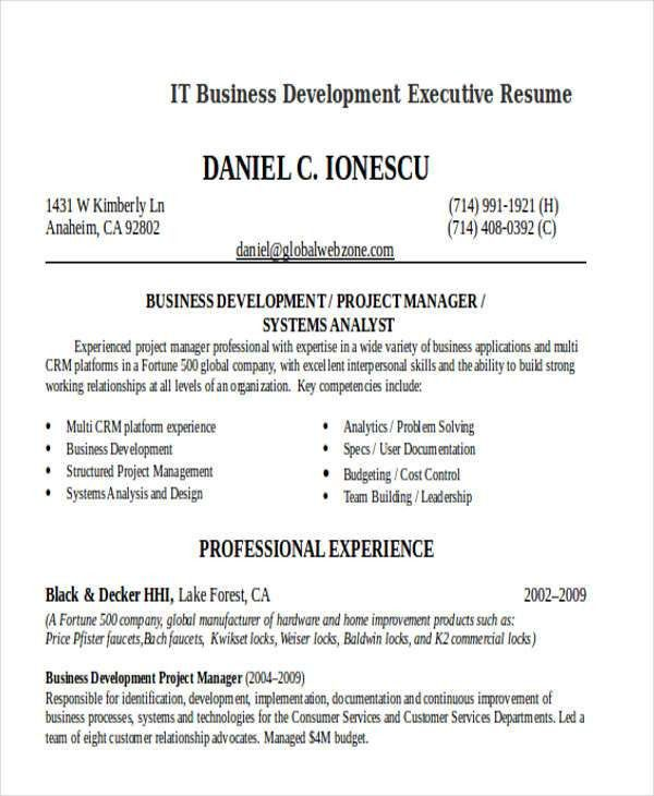 Business Development Executive Resume. Executive Resume 11 Best ...