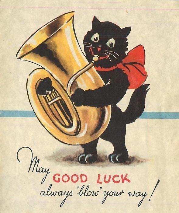 Přes 25 nejlepších nápadů na téma Black Cat Good Luck na ...