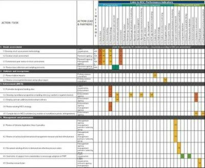 Image of MSC Fishery Improvement Action Plan Template — Marine ...