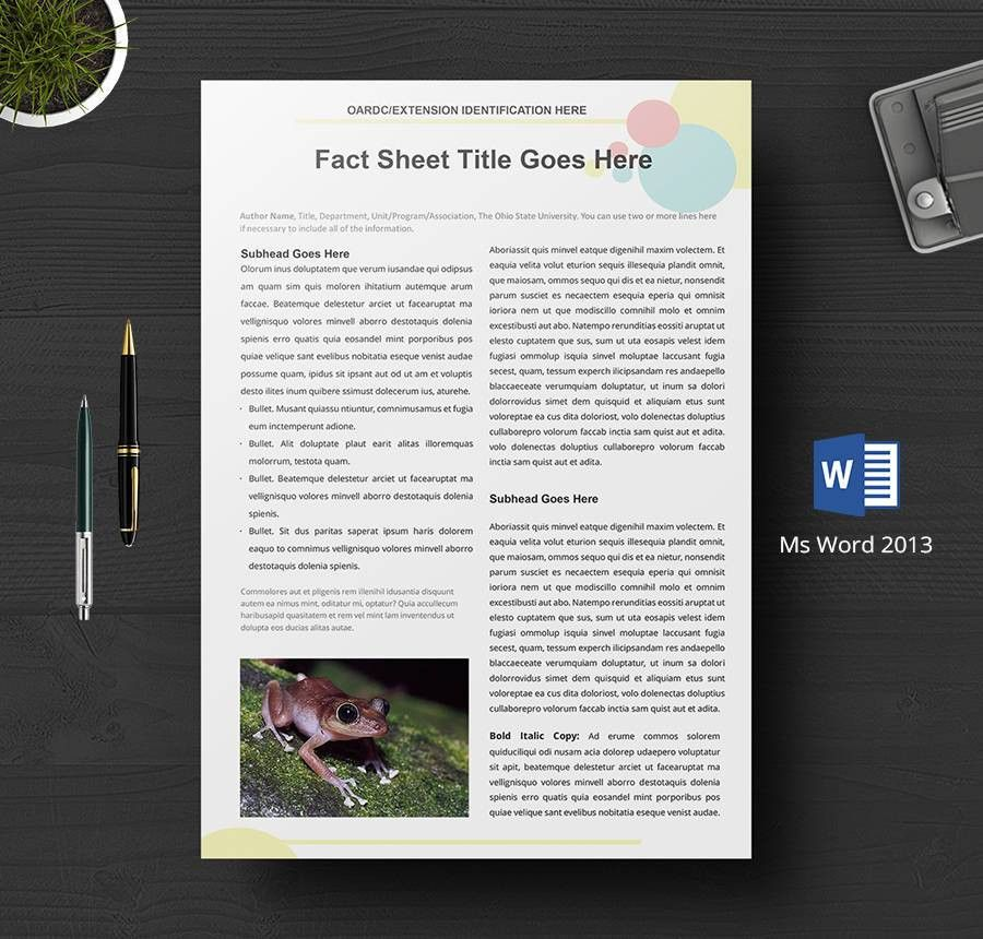 8+ Free Fact Sheet Templates - Survey, Campaign | Free & Premium ...