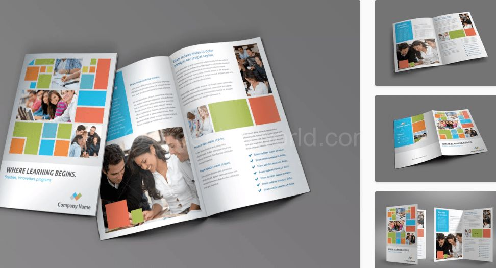 Download Education Brochure Template PSD Free