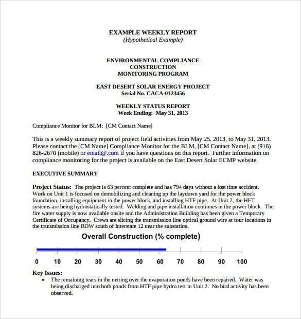 Sample Weekly Status Report - 7+ Documents In PDF, Word