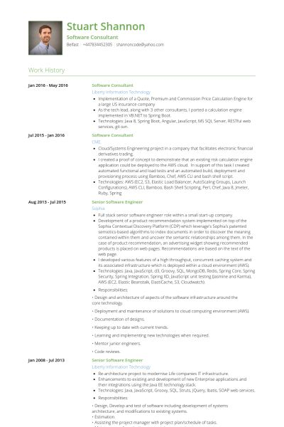 Software Consultant Resume samples - VisualCV resume samples database
