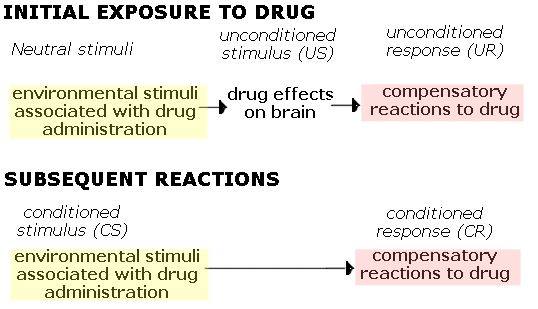 Classical Conditioning and Addiction • Sober Nation