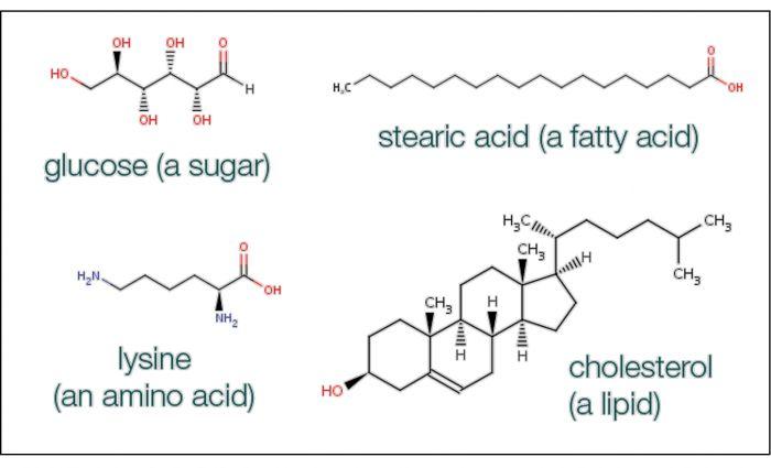 Small molecules | EMBL-EBI Train online