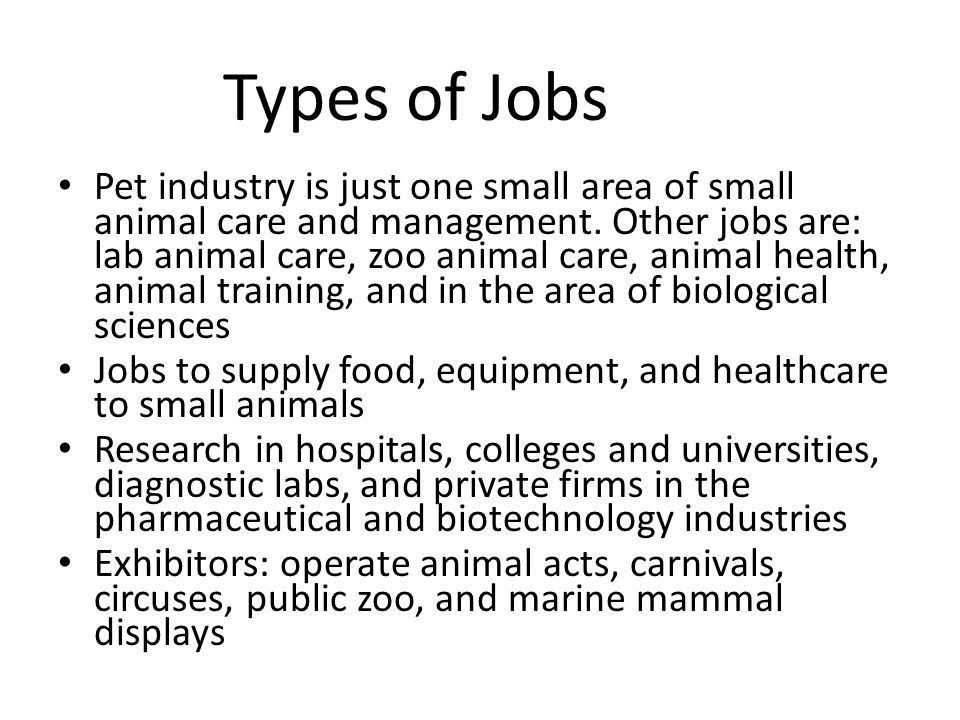 Discuss careers and skills needed for employment in the small ...