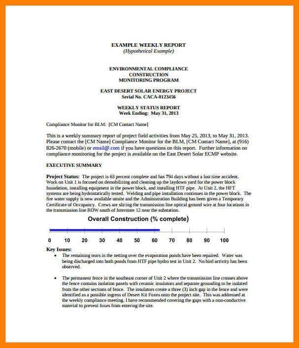 8+ activities report template | sales resumed