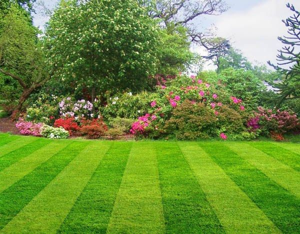Lawn Care Dublin OH - Hoffmans Lawn Care