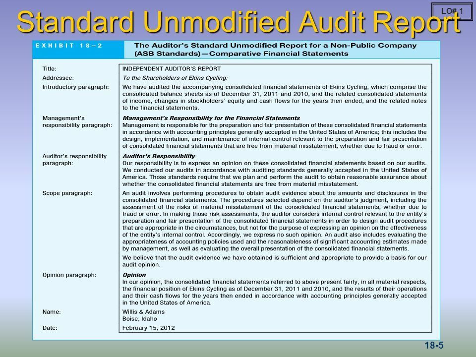 Reports on Audited Financial Statements - ppt video online download