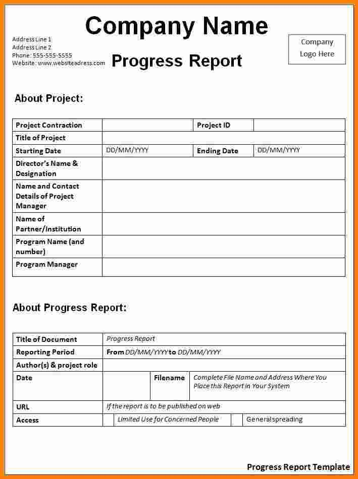 12+ simple activity progress report template   ledger paper