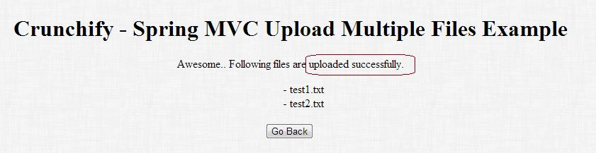 How to Upload Multiple Files to Specific Location using Spring MVC ...