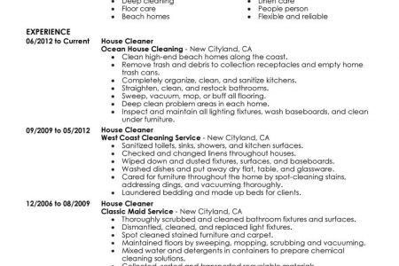 cleaning business resume