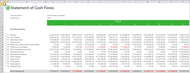 How to customise a cash flow statement
