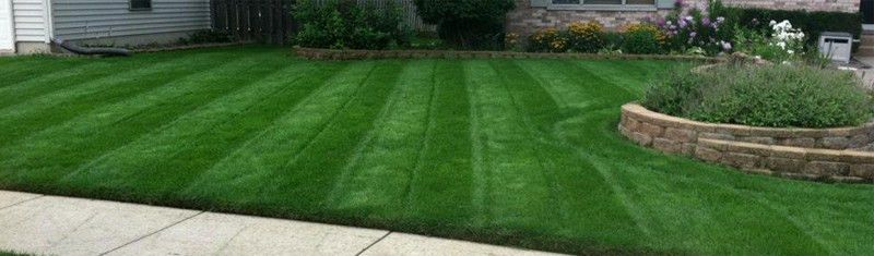 The #1 Lawn Care Tip for a Lush, Beautiful Lawn | Spring-Green