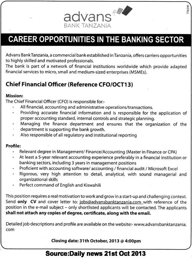 Chief Financial Officer Job Description. Executive Resume Template ...