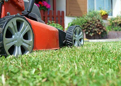 Landscaping & Lawn Care | Anthony's Lawn Care Plus –