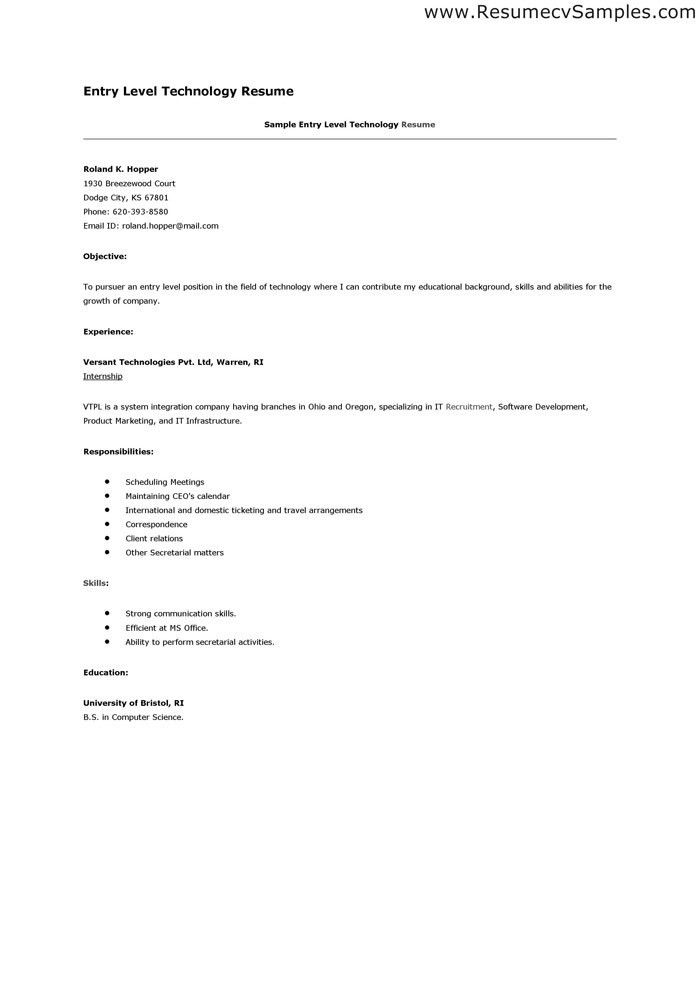 sample entry level information technology resume