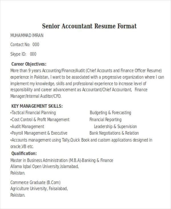 Sr Internal Auditor Resume. internal auditor resume samples ...