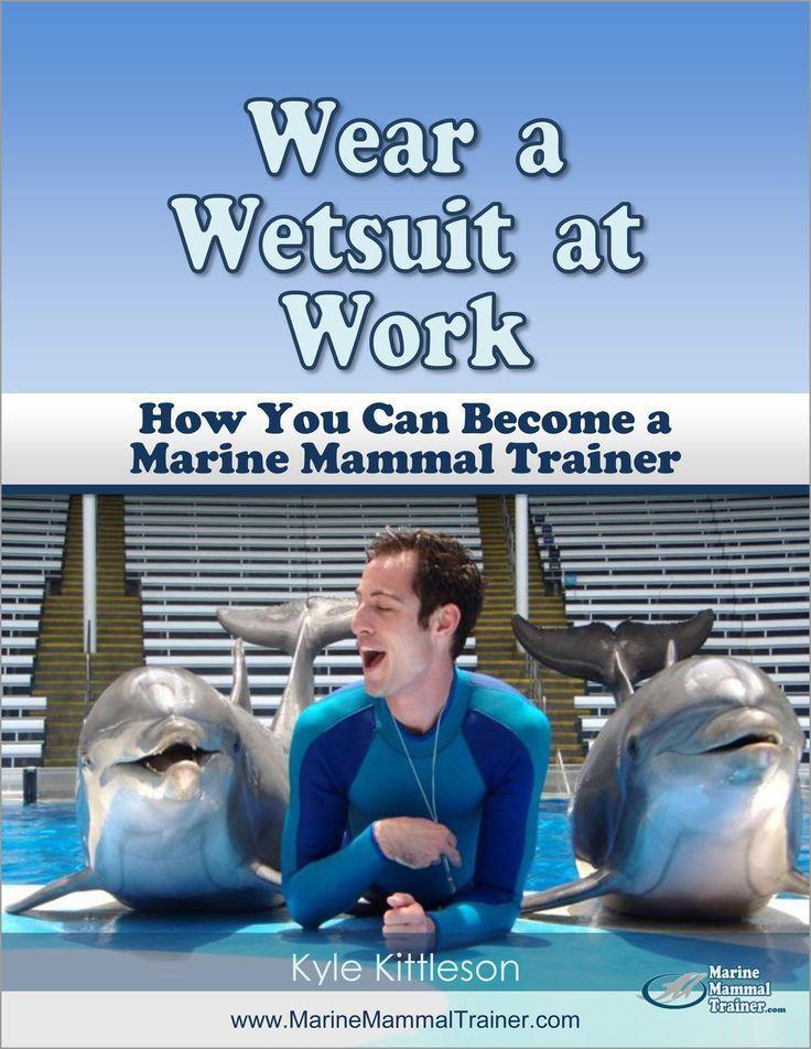Aspiring Trainers » Marine Mammal Trainer | Lila | Pinterest ...