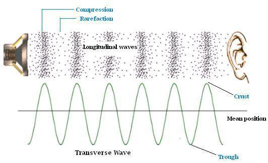 Longitudinal vs transverse waves. Longitudinal (sound) waves move ...