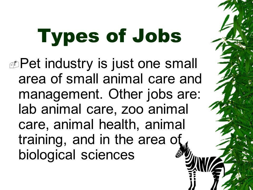 The Small Animal Care Industry- Part I - ppt video online download