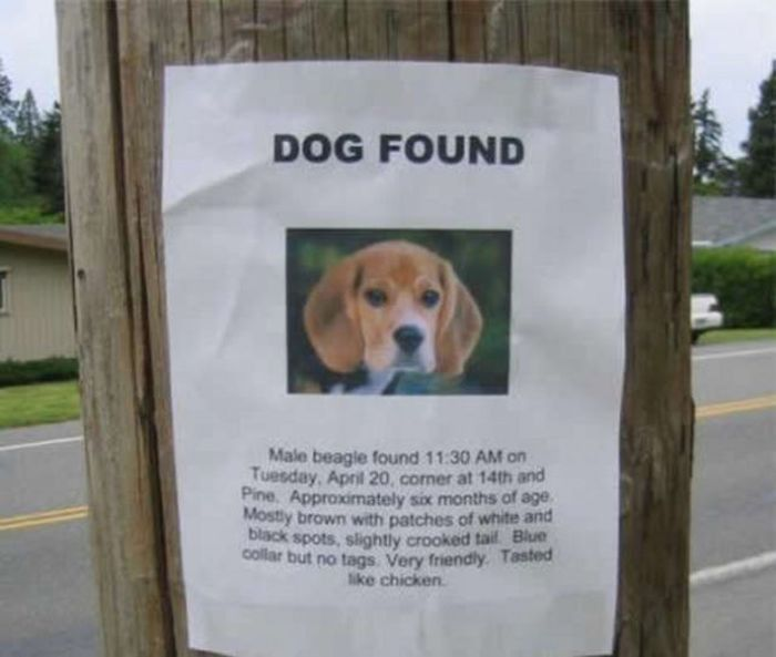 22 totally pointless lost and found posters of absolute joy ...