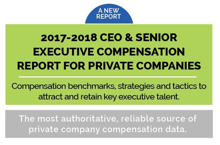 2017-2018 Comp Report | CEO and Senior Executive Compensation ...