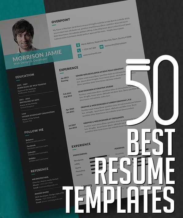 resume template design 20 beautiful free resume templates for