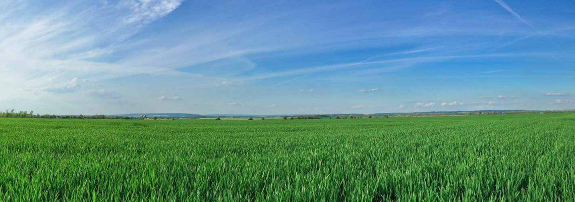 Crop Insurance Plans - American Farm Bureau Insurance Services, Inc