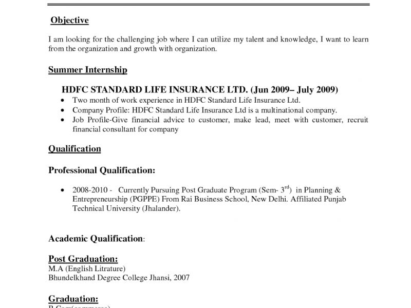 Innovation Inspiration Standard Resume Format 3 Download Resume ...