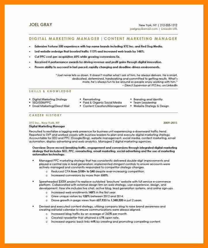 Digital Advertising Resume] Hiring Digital Marketing Manager In