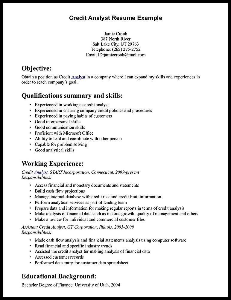 Risk Analyst Resume Sample - RESUMEDOC