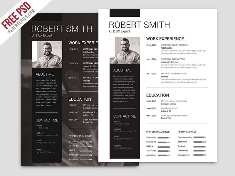 42+ Impeccable Resume Templates Word PSD INDD AI Download ...