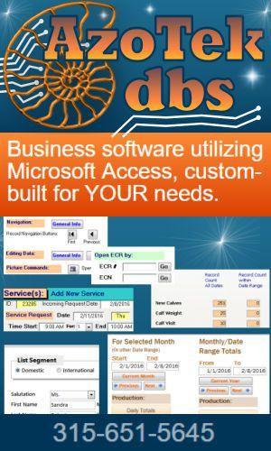 MS Access Developer Programmer, Custom Business Software ...