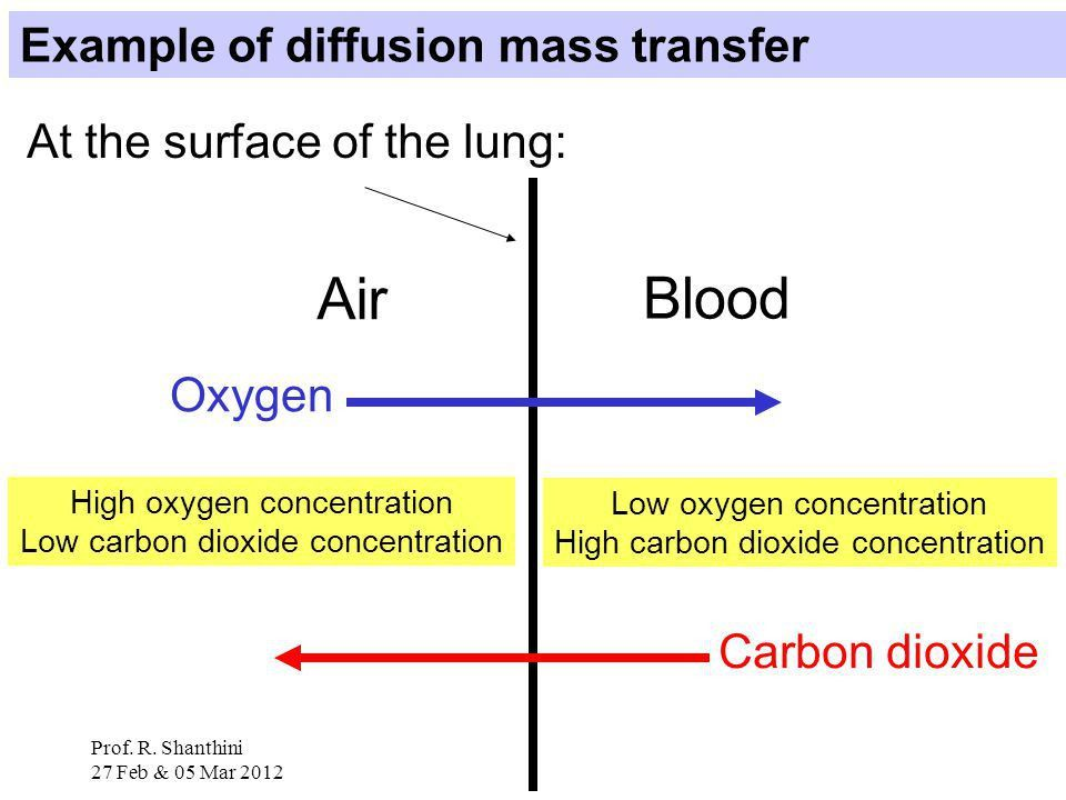 PM3125: Lectures 1 to 5 Content: Mass transfer: concept and theory ...