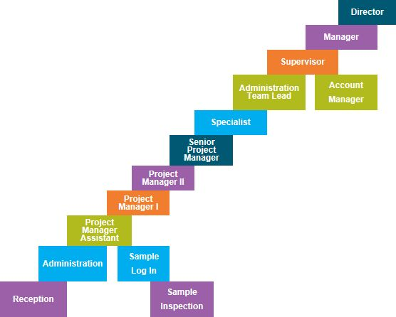 Career Path Application Support | Professional resumes sample online