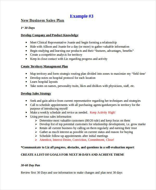19+ Sales Plan Examples