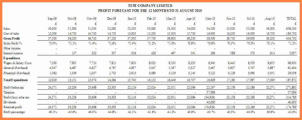 3+ cash flow forecast template | Invoice Example 2017