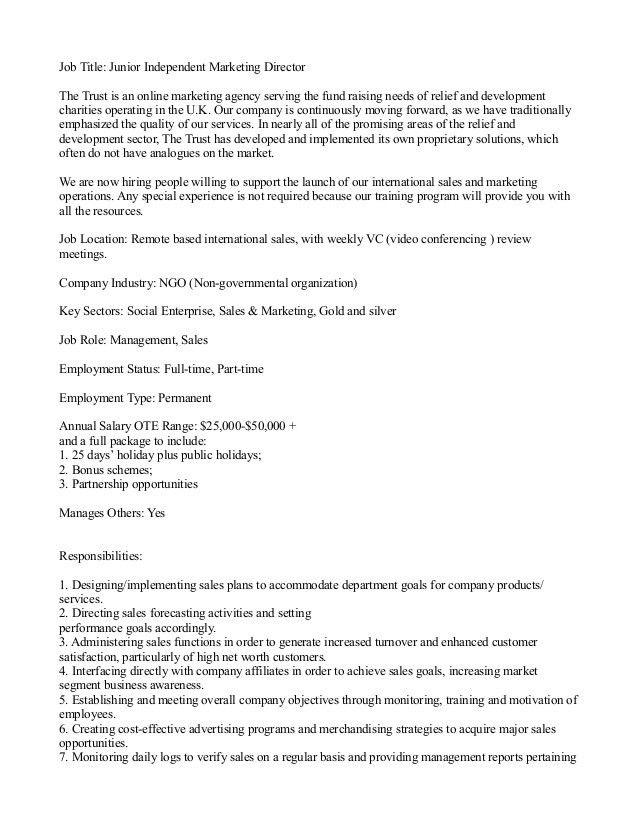 Junior Independent Marketing Director Job Description